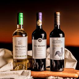 Experiencia Viñas de Chile