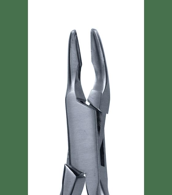 Friedman 14cm - Bone Ronguer