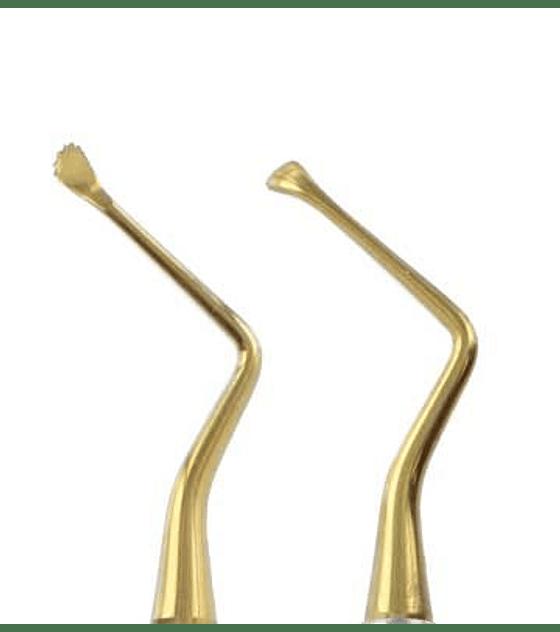 Lucas Curette 86 (Gold Titanium)