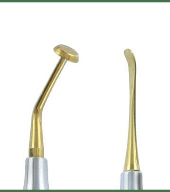 Sinus Lift (CA) - Gold Titanium