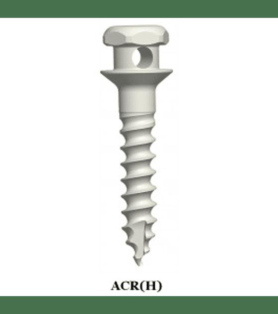 Micro Tornillos de Anclaje Diametro 1,6mm