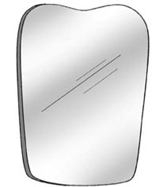 Photo Mirror Occlusal Pedo