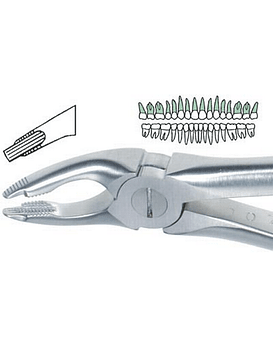 Deep Gripping Upper Atraumatic Extraction Forcep