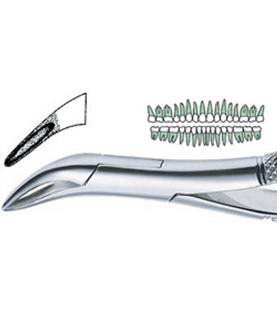69 Extraction Forcep-Carbide Tip
