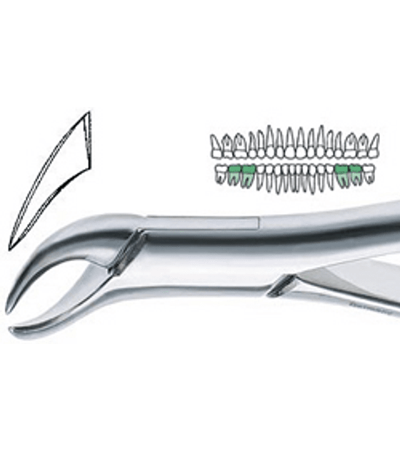 23 Extraction Forceps