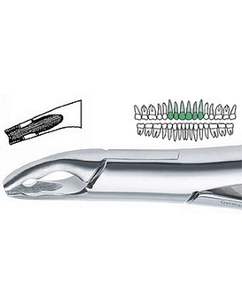 150 AS Extraction Forcep