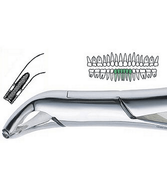 151 AS Extraction Forcep
