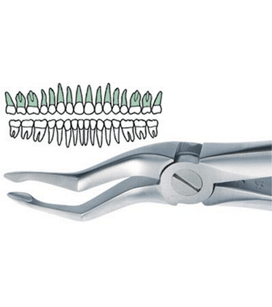 Bayonet Tip Upper Atraumatic Extraction Forcep