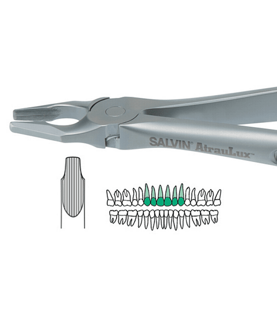 Salvin Atraulux Extraction Forcep #1