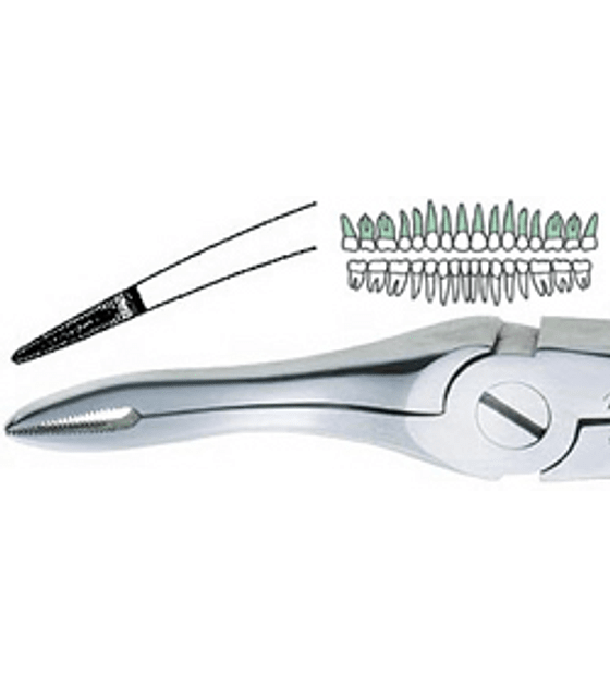 Root Tip Forcep CARBIDE