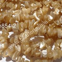 Madre perla chip chico, en tono café dorado, tira de 80 cm aprox