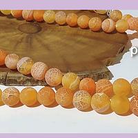 Agatas, Agata frosting 8 mm, en color naranjo, tira de 46 piedras aprox