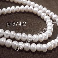 Perla de río rondell 5 mm, tira de 90 perlas aprox.