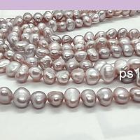Perla de rio ovalada irregular, entre 5 y 6 mm, 63 perlas aprox.