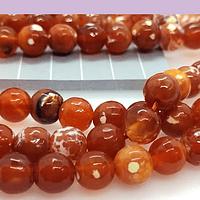 Agatas, Agata facetada en tonos naranja matizada de 8 mm, tira de 46 piedras apróx