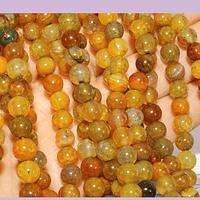 Agatas, Agata lisa de 6 mm, en tonos ocres, tira de 63 piedras aprox
