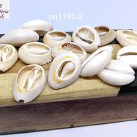 Conchitas cortadas en color crema, 15 a 17 mm de largo, set de 30 grs.