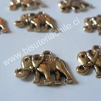 Dije colgante elefante dorado 18 mm de ancho y 15 mm de alto set de 7 unidades