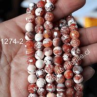 Agata frosting 8 mm, en colores naranjos y blancos, tira de 45 piedras aprox