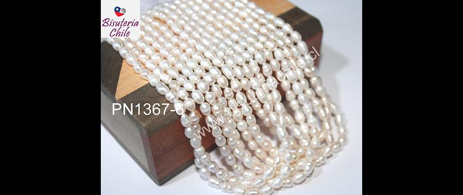 perla de río ovalada, 5 x 4 mm aprox, tira de tira de 65 perlas aprox