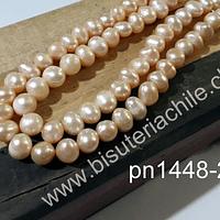 Perla de río damasco clarom de 6 mm aprox, tira de 68 perlas prox.