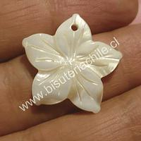 Colgante de nacar en forma de flor, 24 mm de diámetro, por unidad.