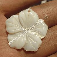 Colgante nacar en forma de flor, 39 mm de diámetro, por unidad
