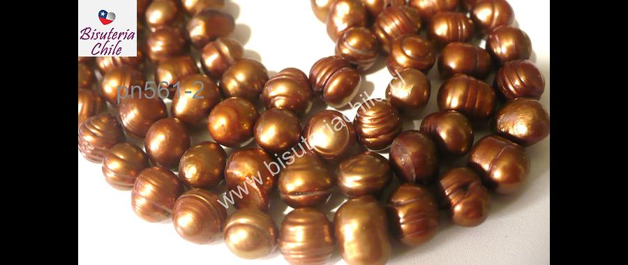 Perla de río color dorado, 8 mm de diámetro, tira de 52 piedras aprox