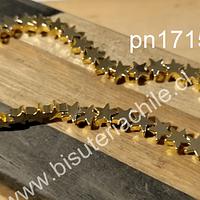 Hematite dorada en forma de estrella, 6 x 6 , de 40 unidades
