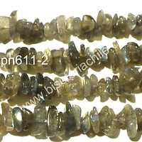 Bella Labradorita chip, tira de 42 cm aprox de largo