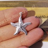 Estrella de mar baño de plata, 23 x 27 mm, por unidad