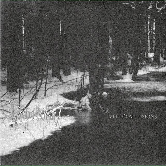 Vinterriket / Veiled Allusions-Split (LP)