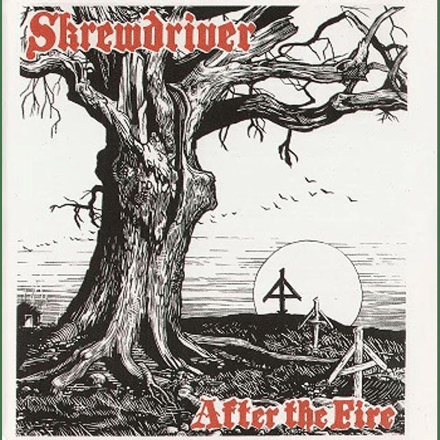 Skrewdriver-After The Fire (CD)