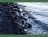 Orilla de lago