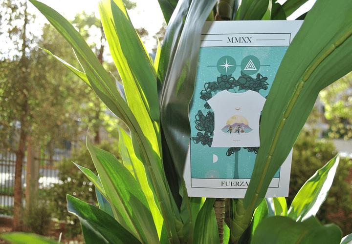 Impresión Sustentable en las Poleras Bosquetro