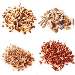 Súper PACK semillas