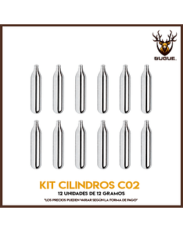 KIT 12 CILINDROS CO2