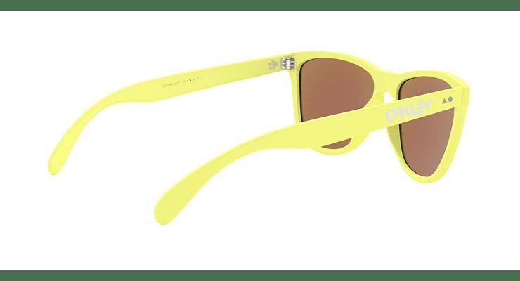 Oakley Frogskins 35Th - Image 8