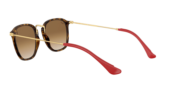 Ray-Ban Round RB2448N - Image 4