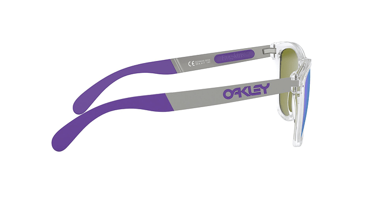 Oakley Frogskins Mix Polarizado - Image 9