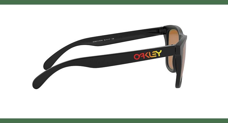 Oakley Frogskins - Image 9