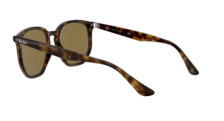 Ray-Ban Hexagonal RB4306 - Image 4