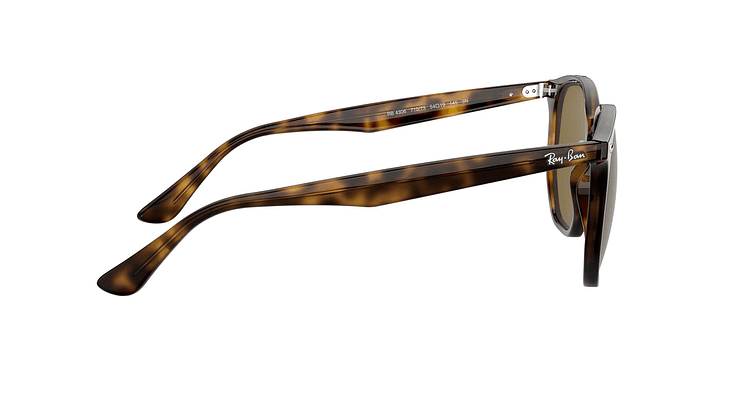 Ray-Ban Hexagonal RB4306 - Image 9