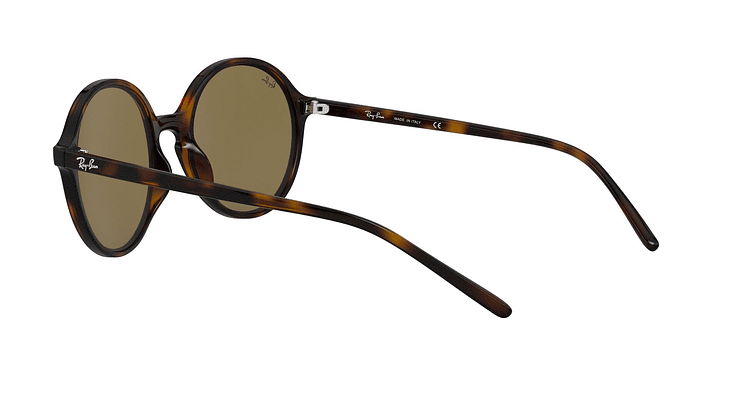 Ray-Ban Round RB4304 - Image 4
