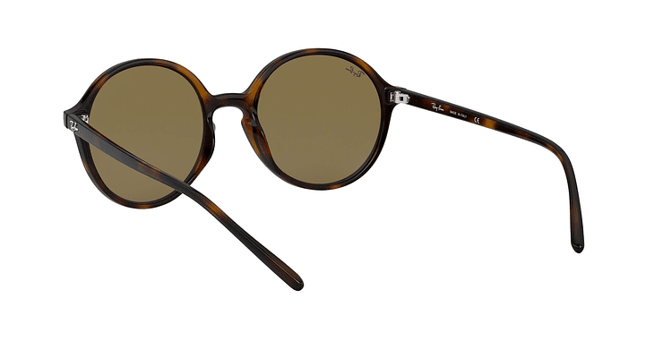 Ray-Ban Round RB4304 - Image 5