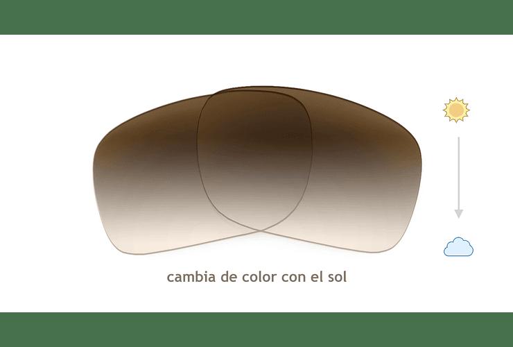 Cristales monofocales (superior) transition café - marcos lentes de sol