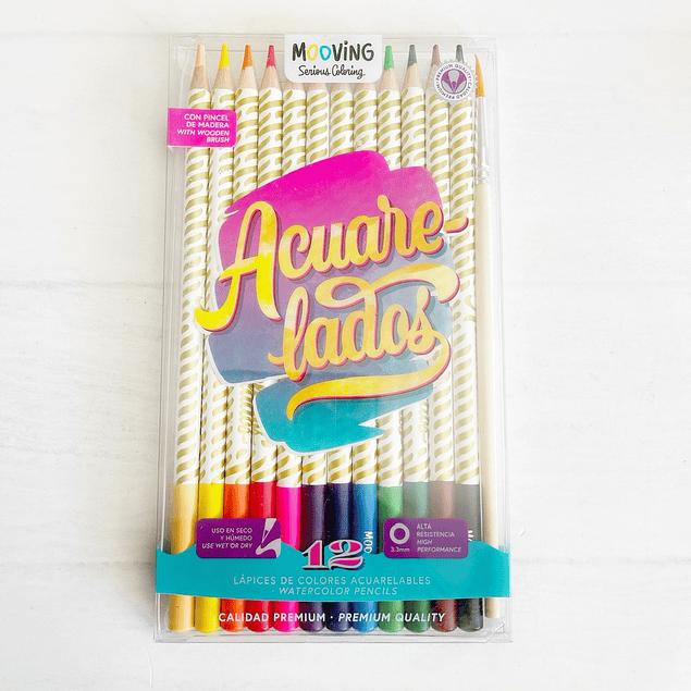 Estuche con 12 lápices colores acuarelables premium + pincel
