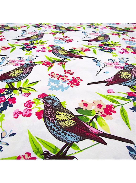 Pájaros Silvestres