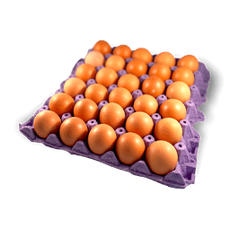 Huevos de Gallina Libre (Bandeja de 30 Unidades)