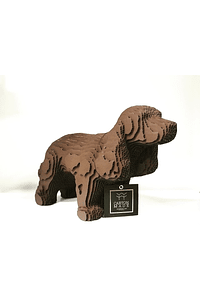 COCKER SPANIEL - NOVA